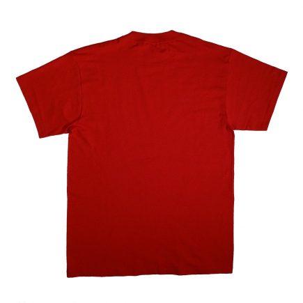 Anaheim Angels World Series Champions 2002 T Shirt Back