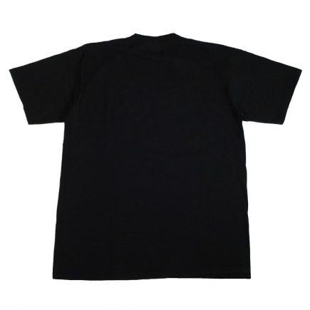 dale earnhardt the man vintage 2001 t shirt back
